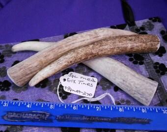 3 Piece Medium Elk Tines Deer Antler Dog Chews for Moderate to Heavy Chewers, F3pmet-270