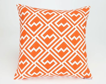 Tangelo Orange Shakes Throw Pillow Cover - 16 inch