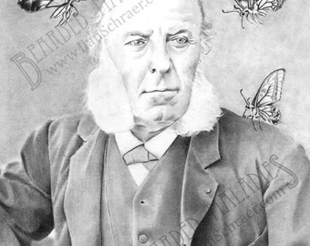 """Old Man with Butterflies Greeting Card, Martin M. Martins, 4.25""""x5.5"""", Blank Inside, muttonchops, vintage, portrait, cabinet card"""