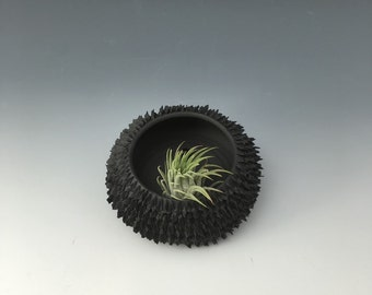 Pod: Black/ black fins