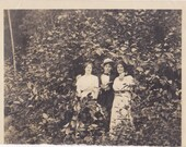 Friends in Foliage- 1910s Antique Photograph- Edwardian Trio in Bushes- Friendship- Outdoors Snapshot- Found Photo- Paper Ephemera