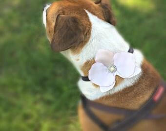 Satin Orchid Dog Collar Flower - Dog Flower Girl - Pet Accessory - Dog Wedding - Dog Accessories - Dog Corsage - Beach Wedding - Customize