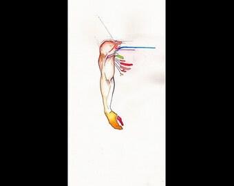 Unbecoming No 5, Original colorful watercolor drawing sketch, Human anatomy figure surrealist vivid art, NYC artist