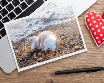 Seashell Notecard, Seashell Photo Card, Shell Card, Blank Card, Beach Photo Card, Thinking of You Card, Photo Greeting Card, Fine Art Photo