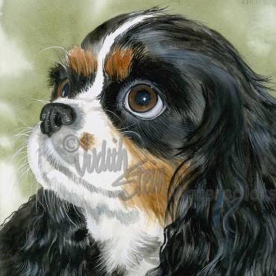 """Cavalier King Charles Spaniel, Tri Color, AKC Toy, Pet Portrait Dog Art Watercolor Painting Print, Wall Art, Home Decor, """"Fit for a King"""""""