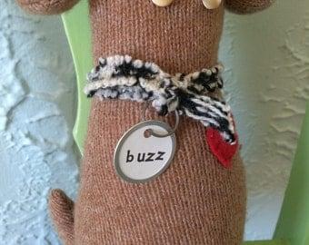 Pint-sized Pup, 'Buzz'