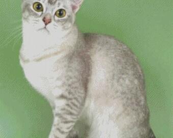 Burmilla Cat Cross Stitch Pattern 002