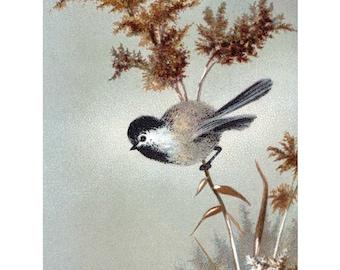 Chickadee Fabric Block | Bird Perches in the Snow Fabric | Vintage Style