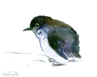 Cute Baby Penguin, original watercolor painting