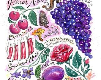 Pinot Noir, Wine Art Print
