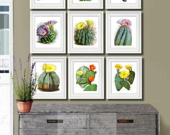 Cactus Prints, Cacti Set of 9 Wall Art Cactus, Southwestern Decor Desert Wall Decor, Southwest Decor, Arizona Wall Art, Cactus Art