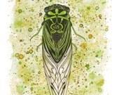 Cicada Watercolor Print
