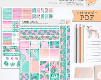 Printable Planner Stickers. Erin Condren Stickers. Tropical Flamingo Journal Planner Stickers. Pink, Turquoise, Peach. Motivational Quotes.