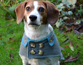 Wool Dog Coat in Turquoise