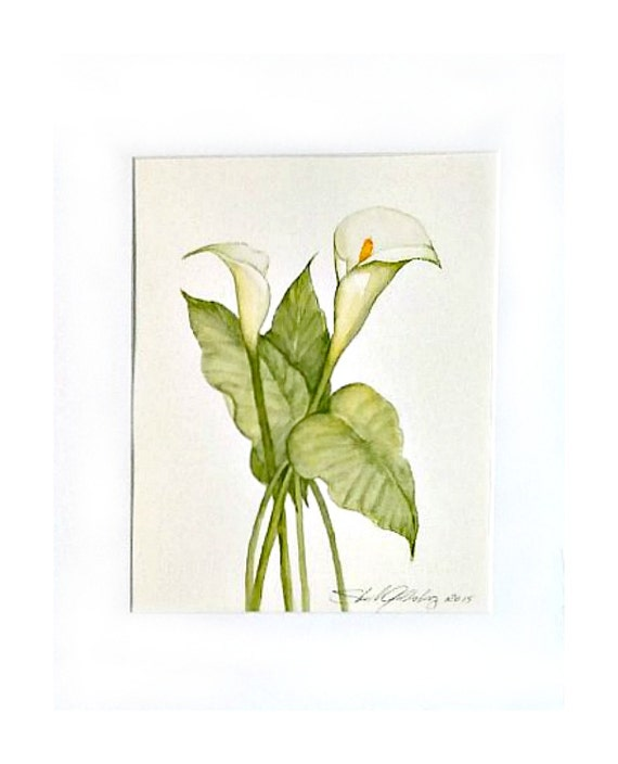Calla Lily Original Watercolor In Soft Greens By