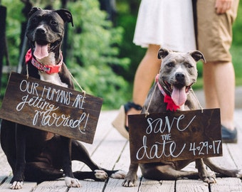 Save the Date Signs for Pets!
