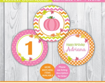 pumpkin cupcake toppers / pink pumpkin cupcake toppers / pumpkin birthday cupcake toppers / pumpkin birthday decor / pumpkin birthday party