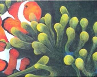 Clownfish swimming through anemone