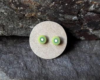 Kiwi ear studs, sterling silver, fruit post earrings, fruit stud earrings, tiny, kawaii, fun