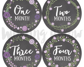Baby Month Stickers Baby Girl Photo Prop Monthly Milestone Stickers First Year Belly Stickers 12 Months Chalkboard Purple Flowers
