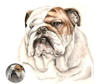 Custom Dog - Pet portrait - custom portrait from photo