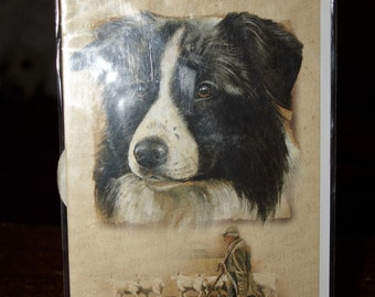 The Border Collie Card
