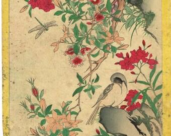 "Japanese antique original woodblock print, Watanabe Gyozan, meiji-period, ""Chats and Flycatchers"""