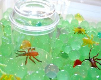 Discovery Kit for Sensory Play (No Box): Creepy Crawlers