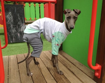 SALE 20% off | Italian greyhound onesie/jammies