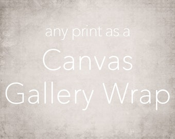 Large Canvas Art, Gallery Wrap Wall Art, Extra Large Wall Art, Fine Art Photography Canvas - 16x20, 16x24, 20x24, 20x30, 24x30, 24x36, 30x40