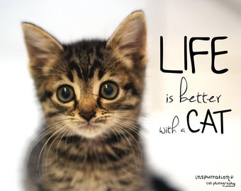 Life is Better with a Cat - Cat Quote Print - Cat Lover Gift - Gift for Pet Lovers - Cat Wall Art - Animal Quote Print