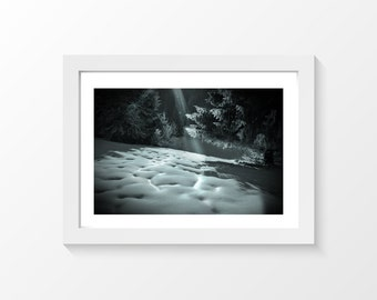 "Like a pillow / Snow tree ray of light black and white photo printable art home decor downloadable art to print yourself / A3 and 11"" x 17"""