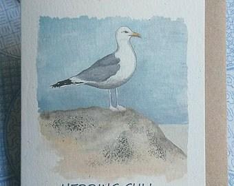 Herring Gull and egg card. Seagull card. Hand painted seagull. British bird. Bird card. Recycled card. Seaside. Coastal. Nautical