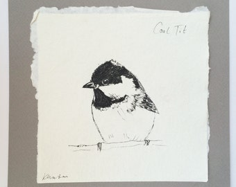 Coal Tit, Ink Sketch