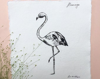 Flamingo, Ink Sketch