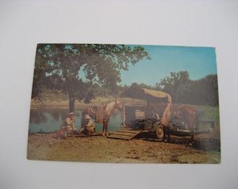 Texas Rangers Postcard Paper Ephemera Used  Vintage Texas Ranger Camp Postcard Used Paper Ephemera Texas Postcard Horses Postcard
