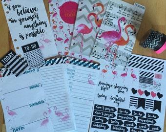 Kit to ring notebook FLAMINGO