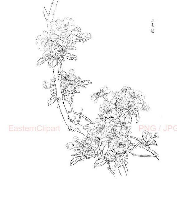 Line Art Etsy : Items similar to chinese line drawing png digital