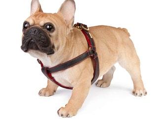 Dog Harness, Leather Dog Harness, Adjustable leather dog harness, Black Dog Harness Personalised Leather Dog Harness, UK