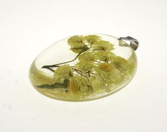 Real Dwarf Everlast Pendant - Transparent Resin Jewelry