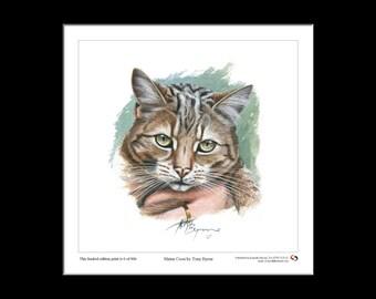 Maine Coon, Cat, Feline, Ltd Edition Print, Tony Byrne