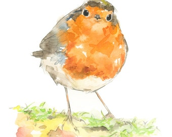 Robin watercolor painting - bird watercolor painting - 5x7 inch print - 0054