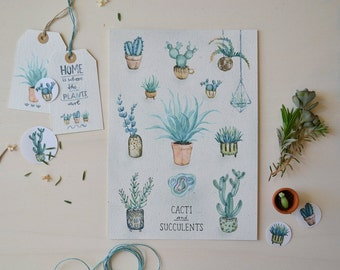 Cacti and Succulents - Print A5