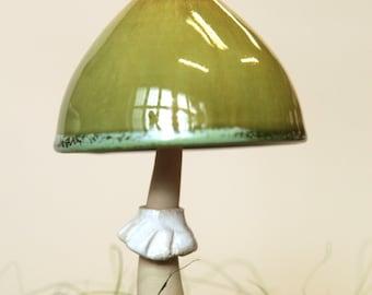Green Amanita bell