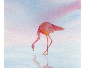 Fenicottero - Flamingo - Watercolor