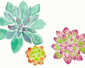Succulent Threesome - Watercolor Print