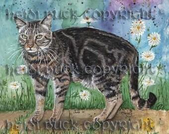 Brown Tabby Cat 'Dylan' Greetings Card