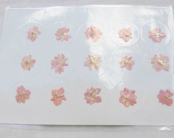 """Pink Larkspur 1.5"""" Real Pressed Flower Decorating Stickers - pack of 15   yhs001"""