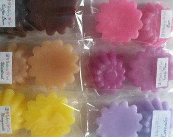 Soy Wax Tart Melts, Pack of 5