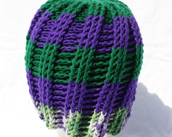 Green and Purple Striped Hat, Adult Size Beanie, Grass Green and Purple Sock Hat, Winter Tobbogan Hat, Crochet One Size Fits All Hat